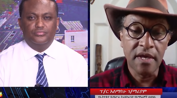 BBC AMHARIC: Interview with EDTFAC Chairman Prof  Alemayehu